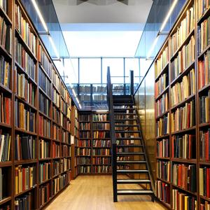 Библиотеки Локоти