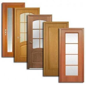 Двери, дверные блоки Локоти